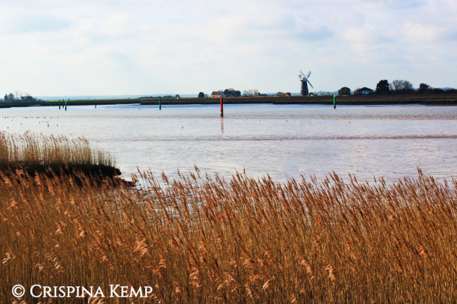 windmill-and-reeds-cp