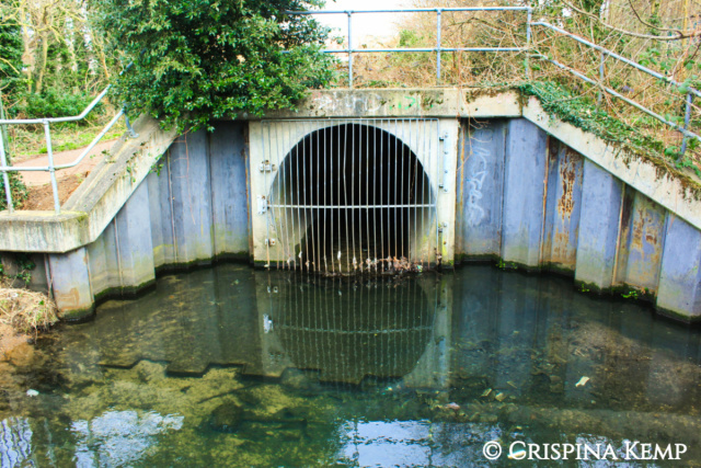 drainage-grid